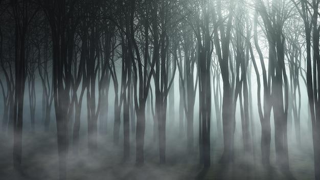 Paesaggio boschivo nebbioso