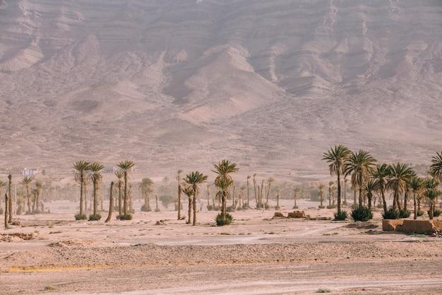 Paesaggio del deserto in marocco