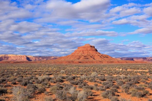 Paesaggio del deserto in primavera, utah, stati uniti d'america.