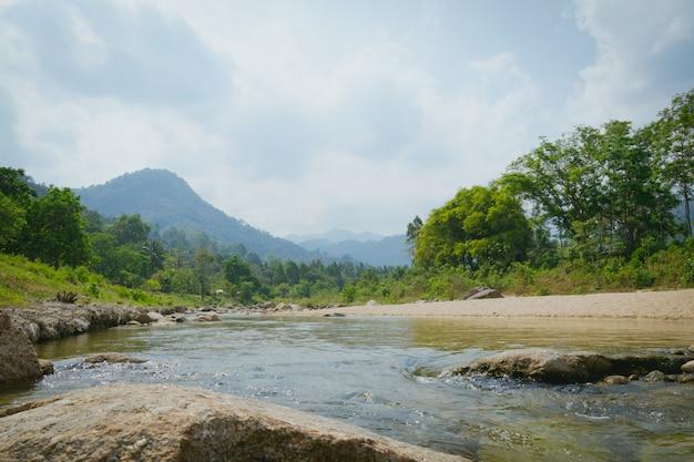 Paesaggio del fiume natura