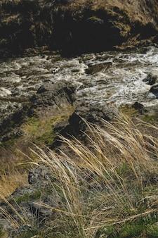 Paesaggio del flusso del fiume della montagna di autunno. vista autunnale del fiume di montagna. panorama del fiume di montagna d'autunno.