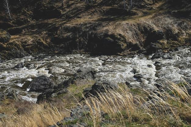 Paesaggio del flusso del fiume della montagna di autunno