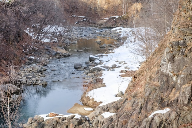 Paesaggio del flusso poco profondo con l'albero asciutto nel giorno nevoso