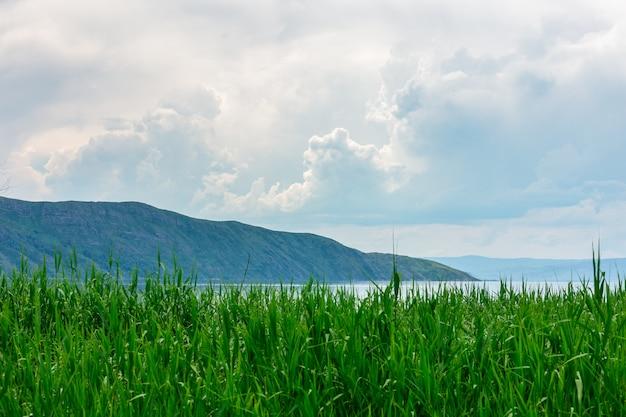 Paesaggio del mare con mountines e canne, cielo blu con nuvole, cloudly senza sole, kazakhstan