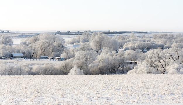 Paesaggio del villaggio invernale