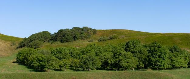 Paesaggio della regione pedemontana in autunno
