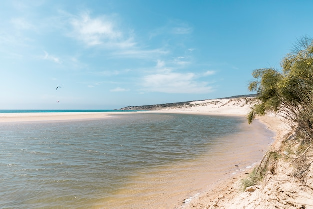 Paesaggio della spiaggia tropicale con parasailing sullo sfondo