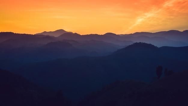 Paesaggio delle montagne della foresta sul tramonto