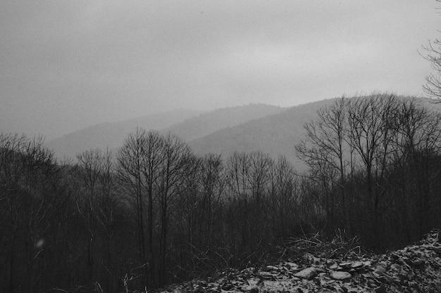 Paesaggio delle montagne in bianco e nero