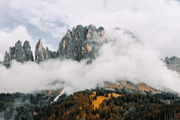 Paesaggio delle rocce circondato dalle foreste coperte nella nebbia sotto un cielo nuvoloso