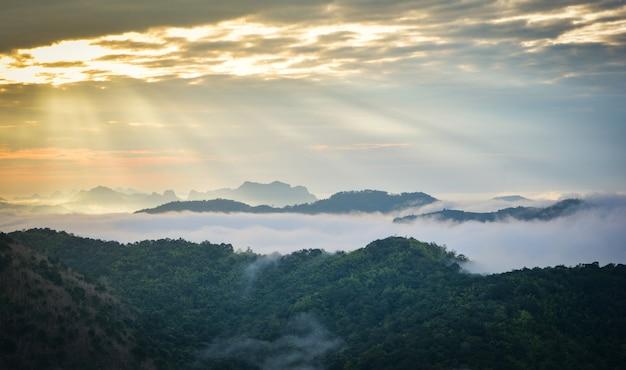 Paesaggio di alba di scena di mattina bello sulla collina con la foresta e la montagna nebbiose della copertura della nebbia