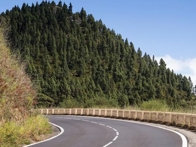 Paesaggio di alberi con autostrada senza pedaggio