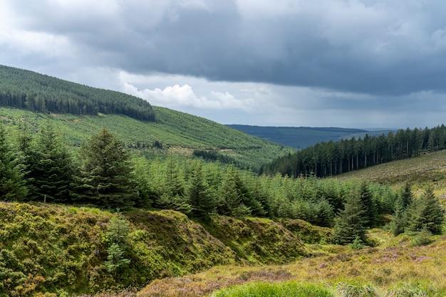 Paesaggio di modo di wicklow in un giorno nuvoloso.