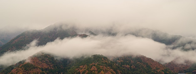 Paesaggio di montagna con la rana in mattinata alla stagione autunnale