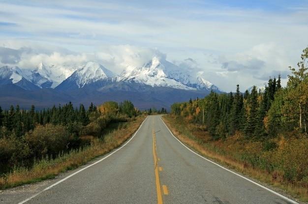 Paesaggio di montagna neve foresta selvaggia alaska