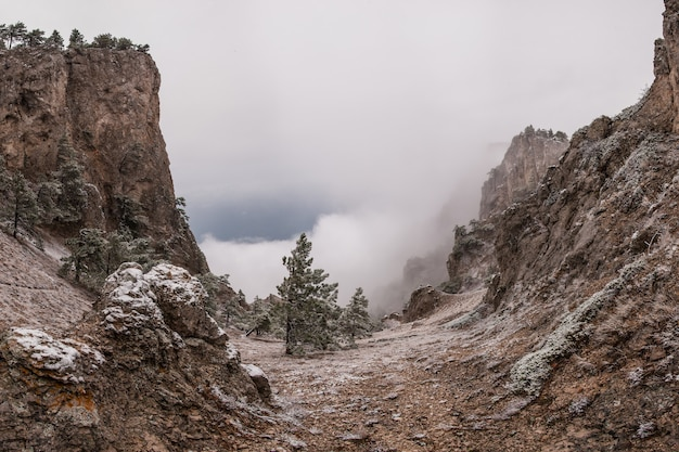 Paesaggio di montagna surreale con nebbia e neve