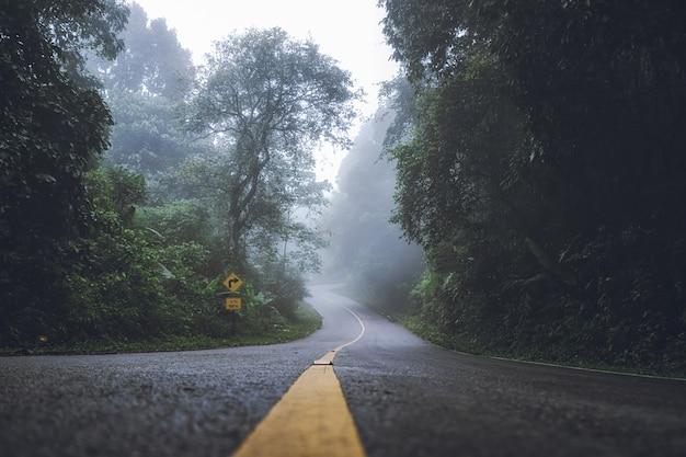 Paesaggio di nebbia densa sulle strade e segnali stradali nella foresta in inverno.