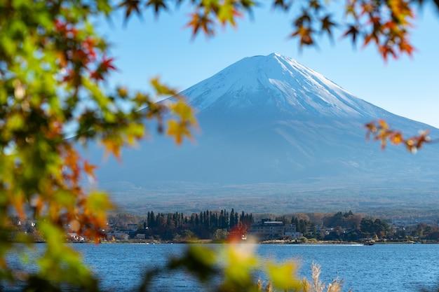 Paesaggio di vista del monte fuji e cornice di foglia d'acero rosso brillante kawaguchiko