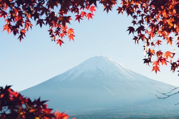 Paesaggio di vista il monte fuji e cornice di foglia d'acero rosso brillante kawaguchiko