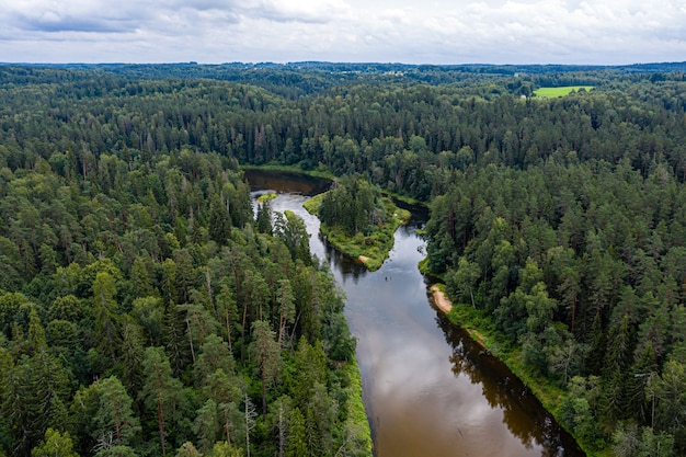 Paesaggio estivo dall'alto con il fiume gauja, che si snoda attraverso boschi misti, parco nazionale di gauja, lettonia