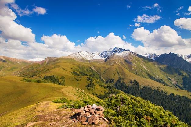 Paesaggio estivo di montagna