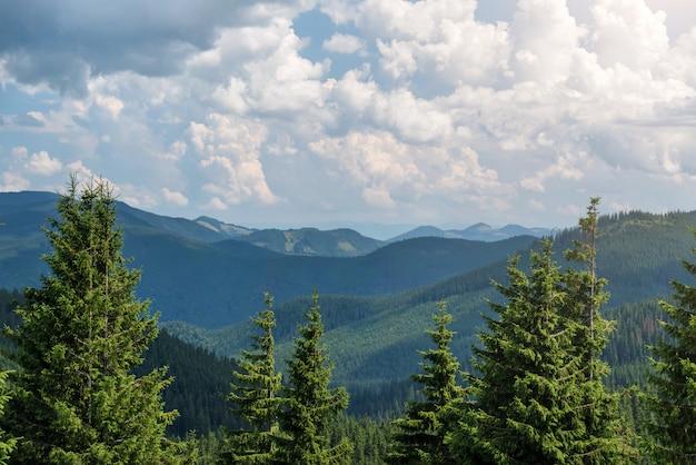 Paesaggio estivo nelle montagne dei carpazi. vista dal picco di montagna hoverla. montagna ucraina carpazi hoverla, vista dall'alto.