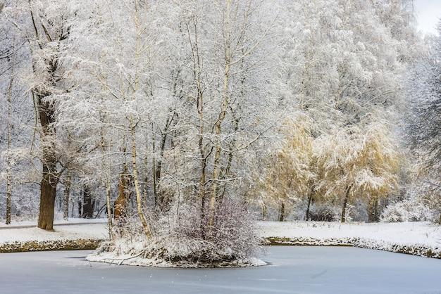 Paesaggio forestale invernale alberi sotto uno spesso strato di neve. russia, mosca, parco sokolniki