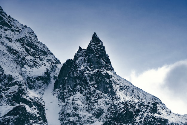 Paesaggio in montagna. belle cime di montagne innevate