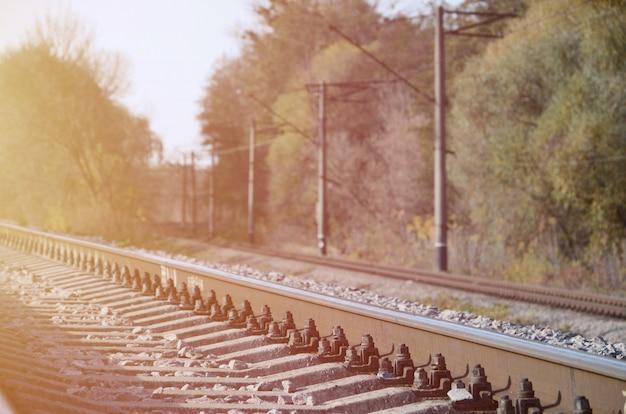 Paesaggio industriale autunnale ferrovia che retrocede nella distanza fra gli alberi di autunno verdi e gialli