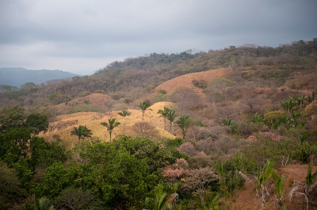 Paesaggio intorno a san jose