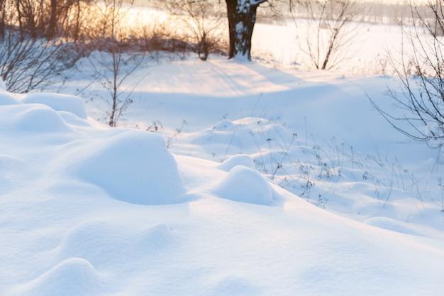 Paesaggio invernale. campo coperto di neve e alberi calvi.