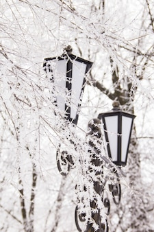 Paesaggio invernale con lampione nella neve