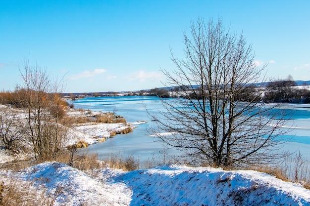 Paesaggio invernale con un albero sulla riva del fiume