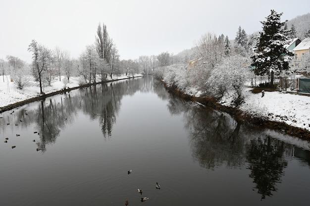 Paesaggio invernale con un fiume. portare a spasso il cane. inverno bellissimo sfondo stagionale in natura.