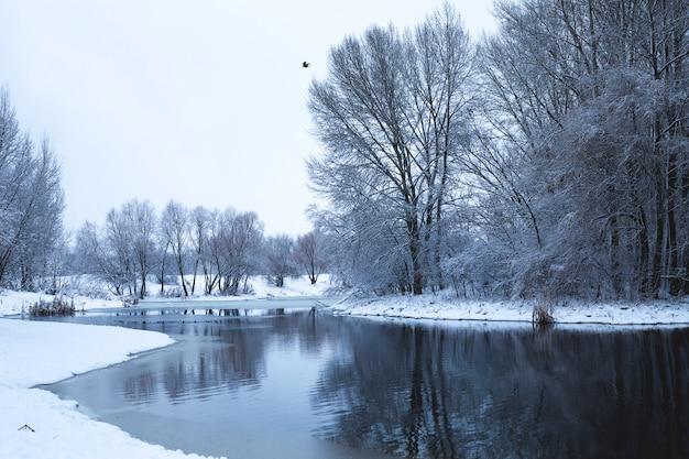 Paesaggio invernale con vista sul fiume durante nevicate. gli alberi innevati si riflettono nell'acqua