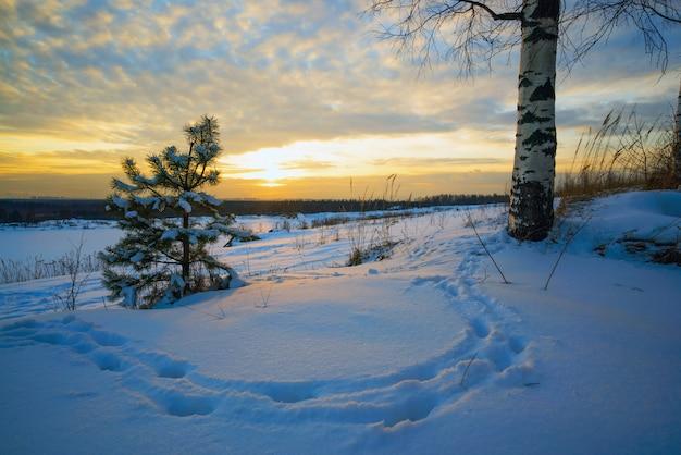 Paesaggio invernale, impronte tramonto nella neve.