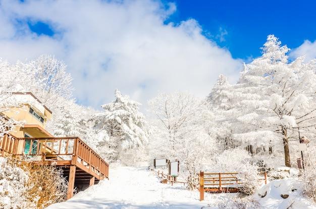 Paesaggio invernale in montagna con la neve che cade a seoul, corea del sud.