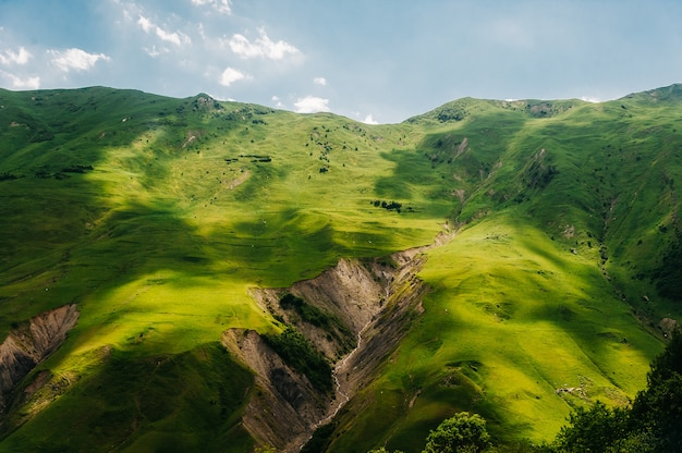 Paesaggio montano con erba verde e schisi.