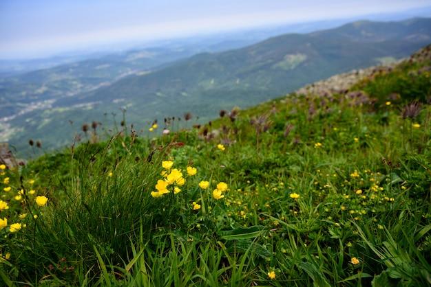 Paesaggio montano in tatra, in polonia