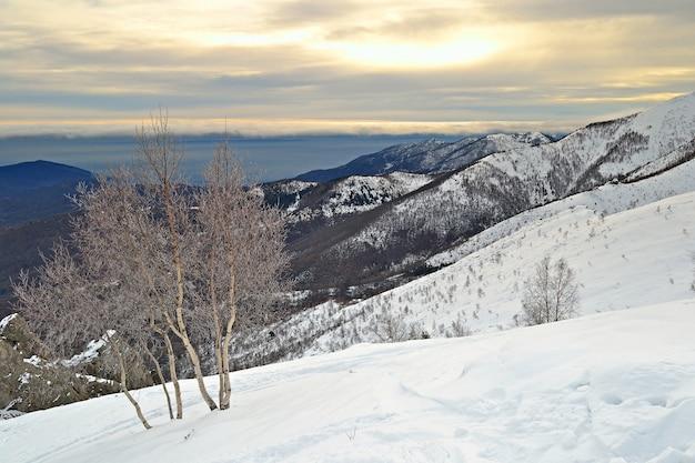 Paesaggio montano innevato inverno sulle alpi