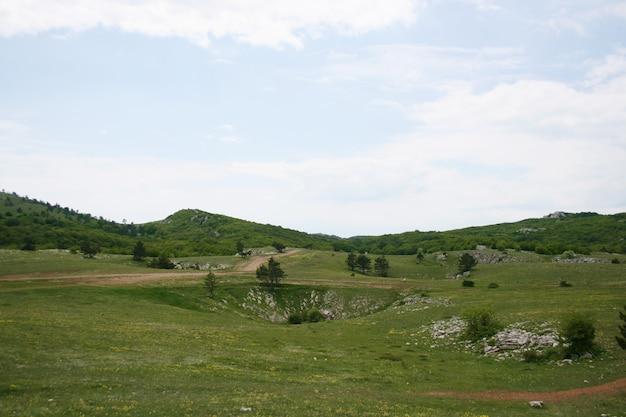 Paesaggio montano. paesaggio montano. prato verde in montagna