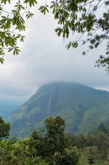Paesaggio montano, pendii verdi. la bellezza delle montagne. picco di little adam, montagna nella nebbia vista dalla giungla