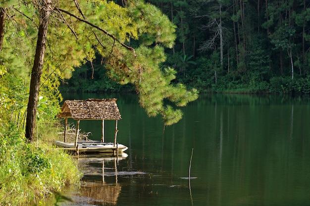 Paesaggio naturale con una foresta intorno ad un lago