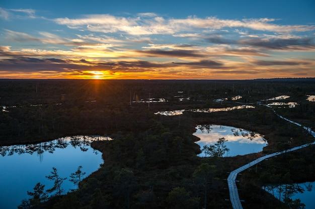 Paesaggio panoramico della palude in autunno al tramonto. sentiero costiero nel parco nazionale di kemeri. lettonia, baltico.