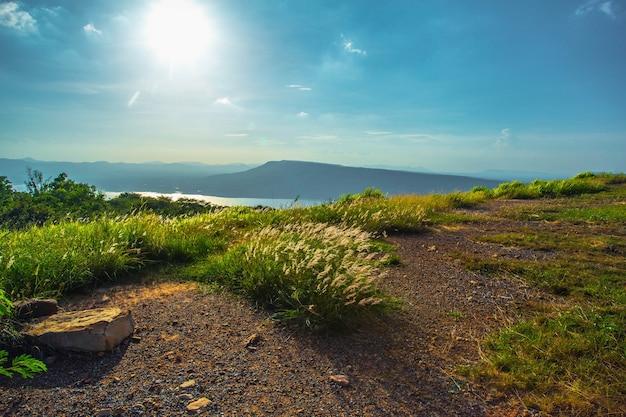 Paesaggio primaverile in montagna con erba