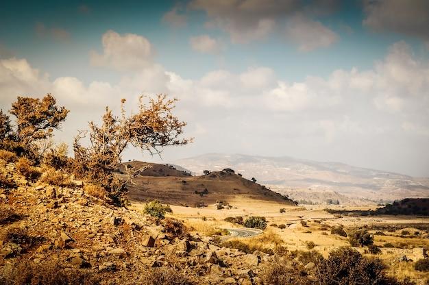 Paesaggio roccioso mediterraneo scuro e asciutto