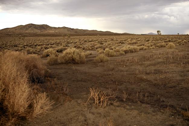 Paesaggio rurale della california