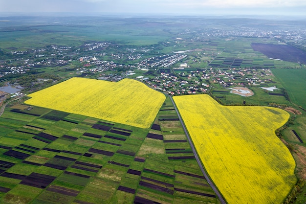 Paesaggio rurale in primavera o in estate. vista aerea dei campi verdi, arati e di fioritura, tetti della casa sull'alba soleggiata. fotografia di droni.