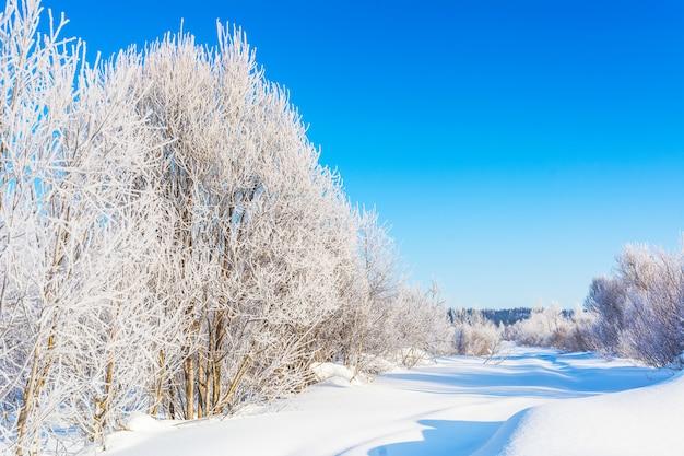 Paesaggio stradale invernale con alberi congelati bianchi