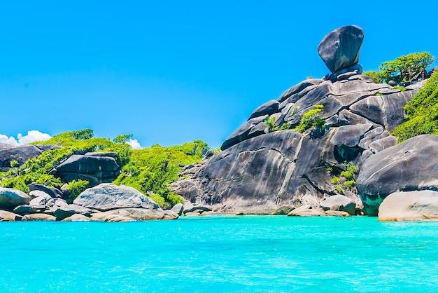 Paesaggio tropicale con pietre e vegetazione